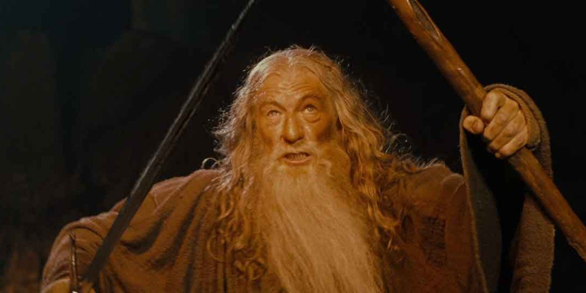 Ian McKellen - The Lord of the Rings: The Fellowship of the Ring