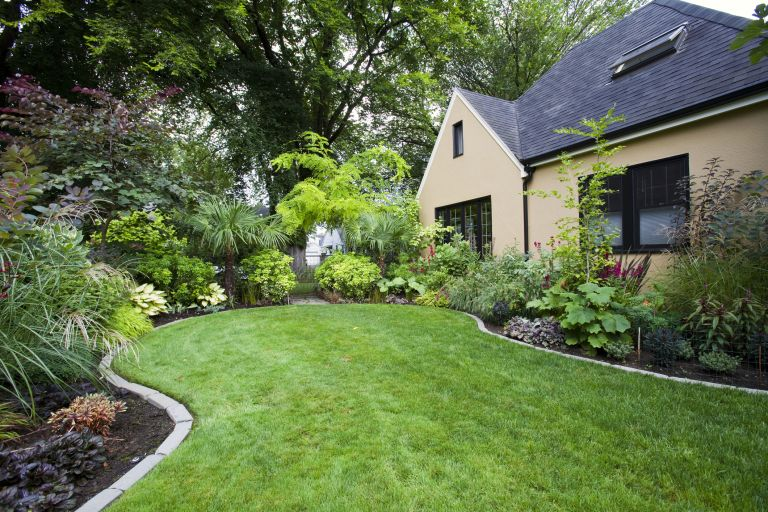 Green lush lawn in newly landscaped garden