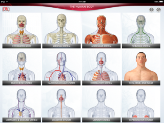 Fantastic Interactive App Teaches Human Anatomy