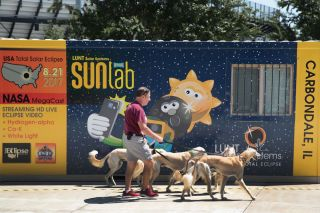Saluki dogs are walked past a solar eclipse exhibit on the campus of Southern Illinois University on August 19, 2017, in Carbondale, Illinois.