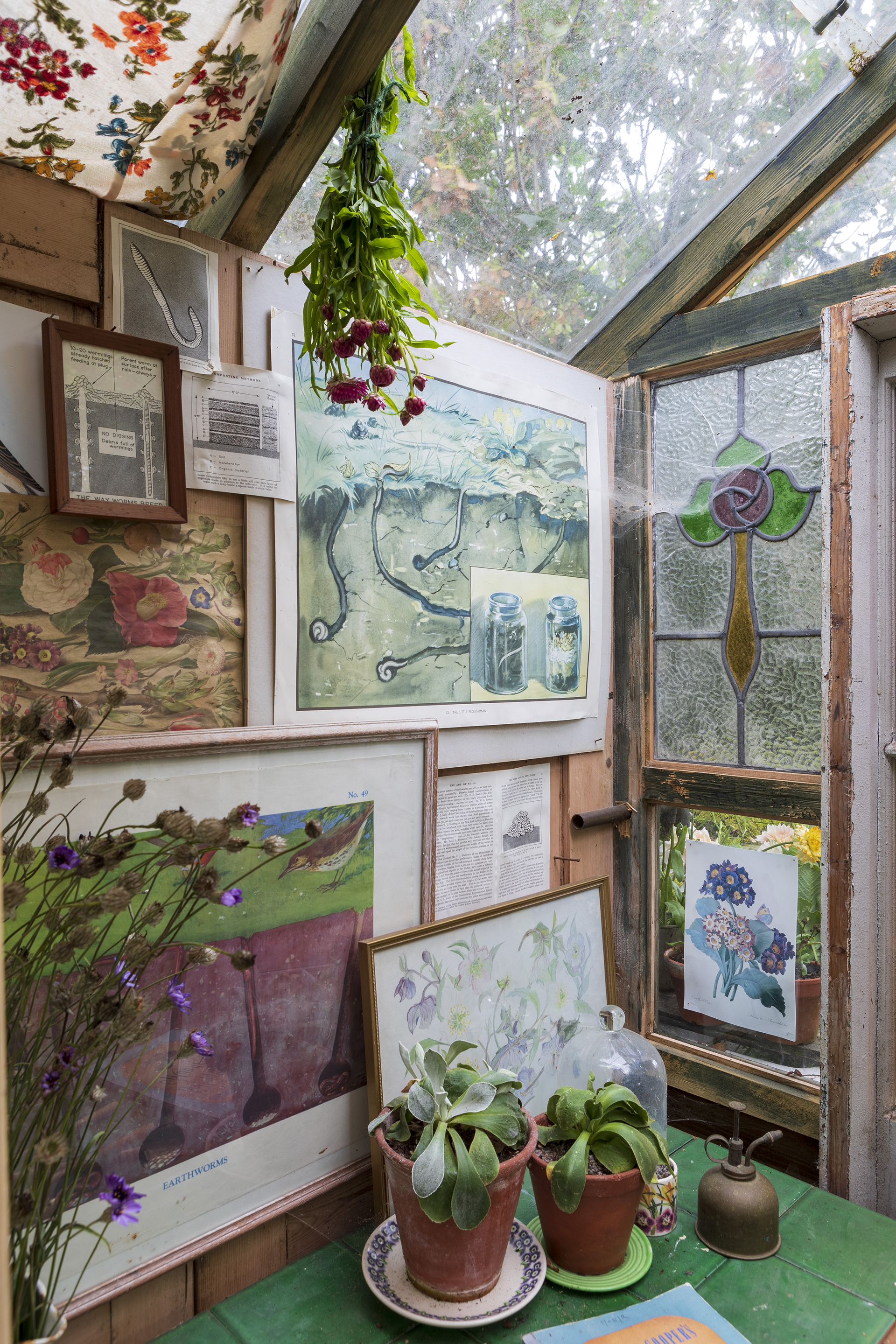 Tarling greenhouse shed in the flower garden