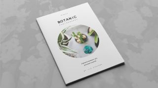 Best brochure templates multipurpose creative