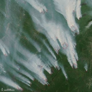 Wildfires in Siberia seen by a NASA satellite