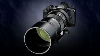 Olympus 300mm f/4