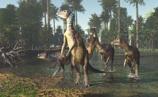 Weewarrasaurus dinosaur illustration