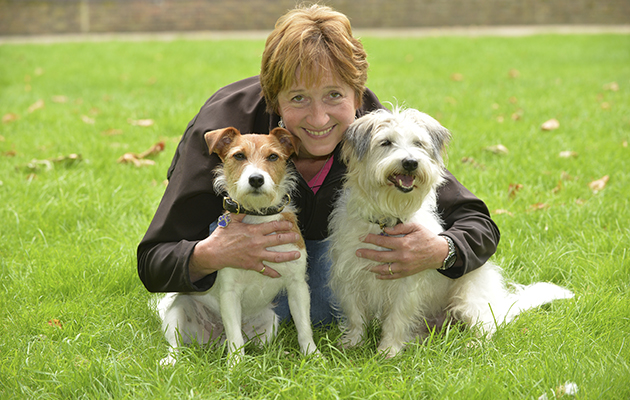 Doc Martin dog trainer Sonia with Dodger and Paddy