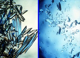 Protein crystals in microgravity