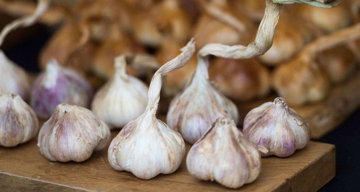Grow the kitchen essential, garlic, from your own garden with this handy guide
