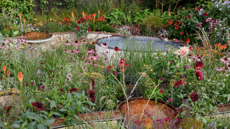 Chelsea Flower Show trends – Finding Our Way: An NHS Tribute Garden. Designed by Naomi Ferrett-Cohen at RHS chelsea flower show
