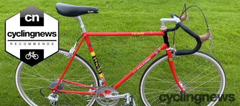 Ti-Raleigh Team 753 40th anniversary replica