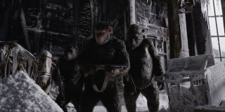 Caesar holding gun in War for the Planet of the Apes