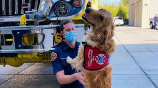 Therapy dog hugs Californian firefighter