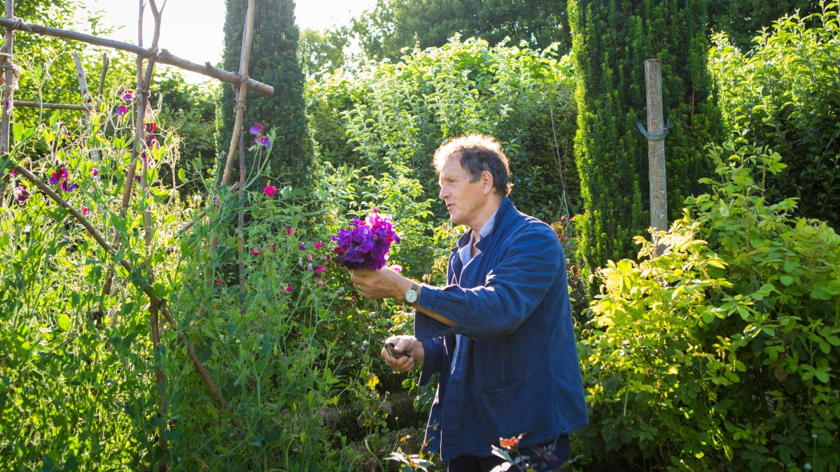 Monty Don reveals his top 5 tips for growing sweet peas – for scent and cutting