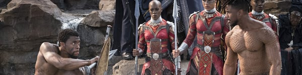 T'Challa and Killmonger do battle at Warrior Falls