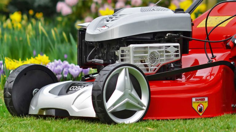 Cobra lawn mower review
