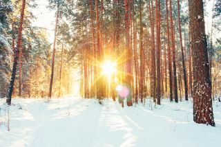 On the winter solstice, the sun is at its southernmost point in the sky in the Northern Hemisphere.