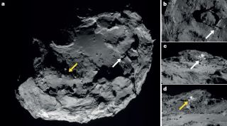 Water Ice Spotted on Comet 67P's Surface