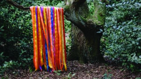 James Holden & The Animal Spirits - The Animal Spirits album artwork