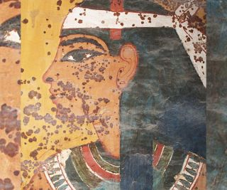 Scientists found that the brown spots on the tomb's wall paintings likely came from a microbe that is now dead.