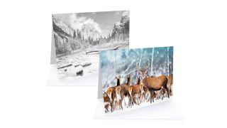 Fotospeed Fotocards