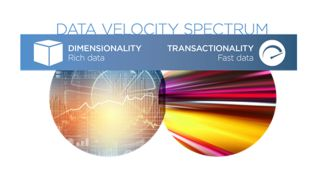 The New Data Velocity Spectrum