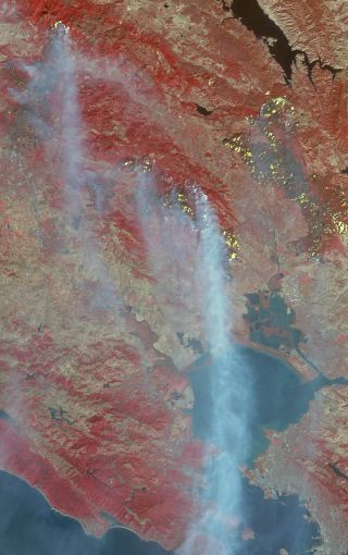 Wildfires satellite image