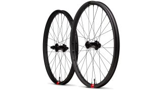 Santa Cruz Reserve DH 29er downhill mountain bike wheels