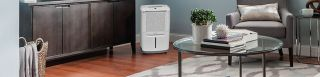Best Dehumidifiers 2019 - Basement and Whole Home Models