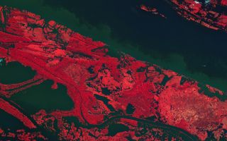 Kompsat-2 View of Amazon River