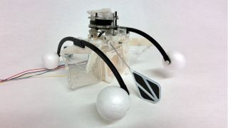 This 'row-bot' scoots across ponds and eats dirty water