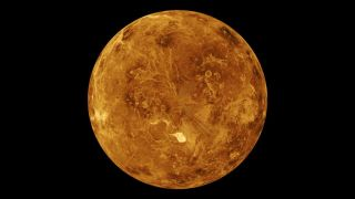 simulation of the surface of Venus, with the Northern Hemisphere displayed