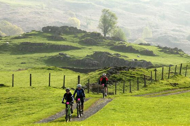 Grizedale Grizzly Adventure X 2014