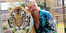 Joe Exotic: The Cast And Other Things We Know About The Tiger King Limited Series On Peacock