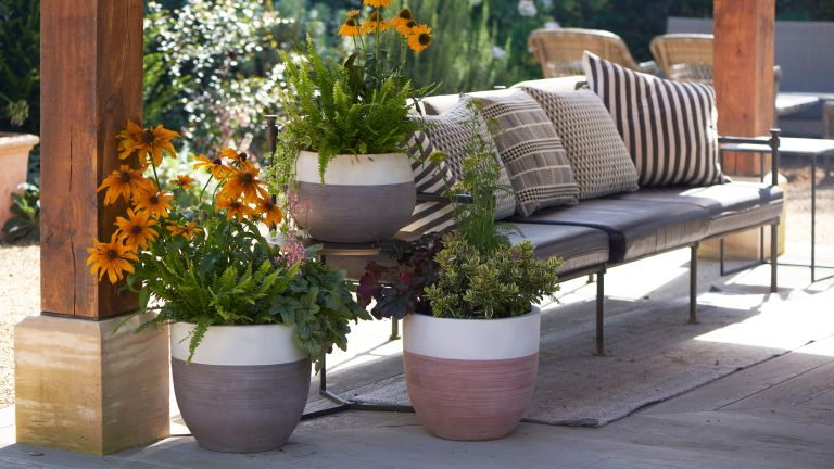 garden planter ideas: woodlodge two tone