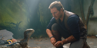 Chris Pratt with Baby Blue in Fallen Kingdom