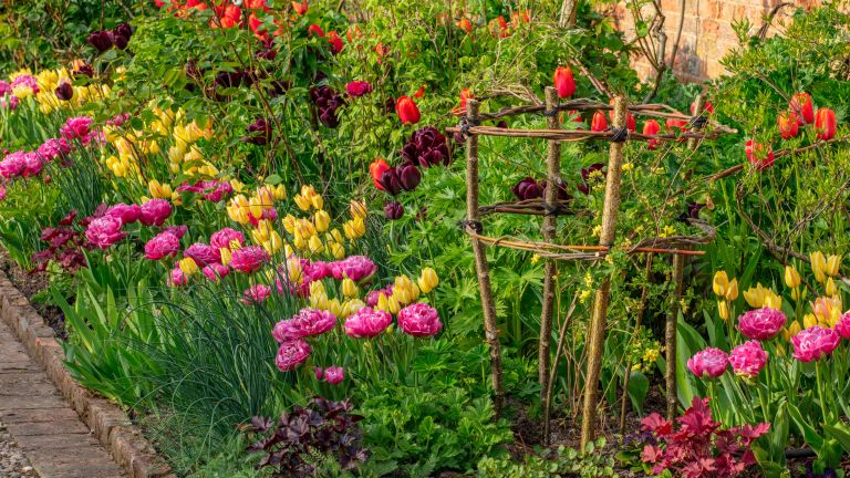 Ways to add color to your spring garden