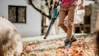 Best Leaf Blowers 2020