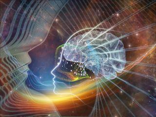 brain, psychedelic, hallucinate