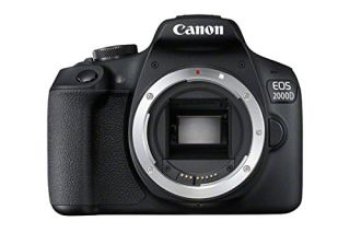 Save £40 with this cashback offer on the Canon EOS 2000D - just in time for the summer