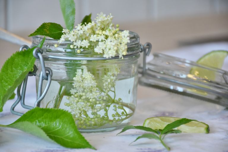 Easter recipes: elderflower cordial