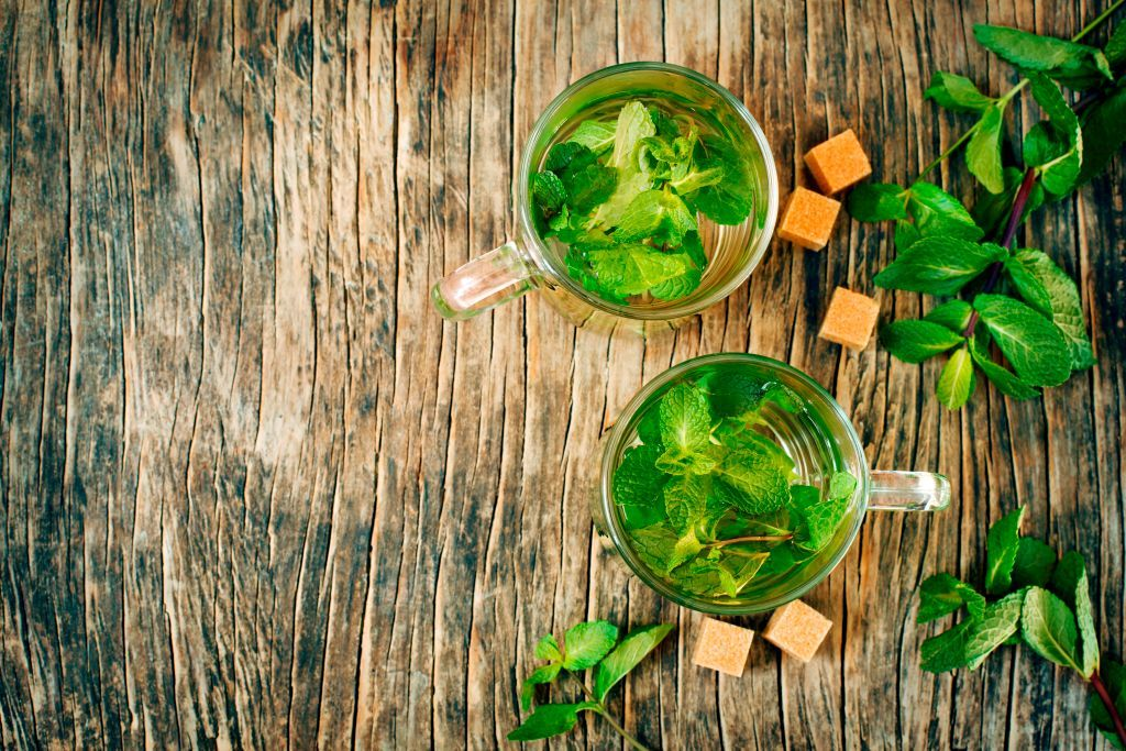 How to grow refreshing mint (it's one of the easiest herbs to grow!)