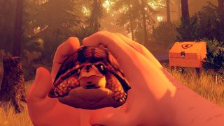 Firewatch turtle