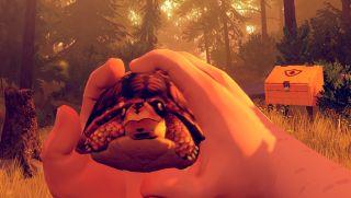 Firewatch turtle