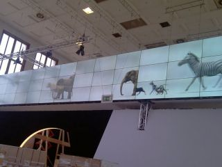 Sharp's video wall in action