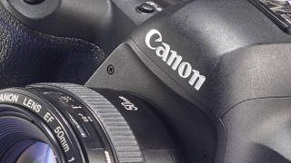 canon full frame mirrorless