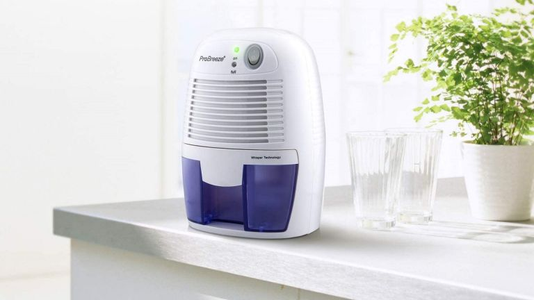 best dehumidifier: Pro Breeze Electric Dehumidifer