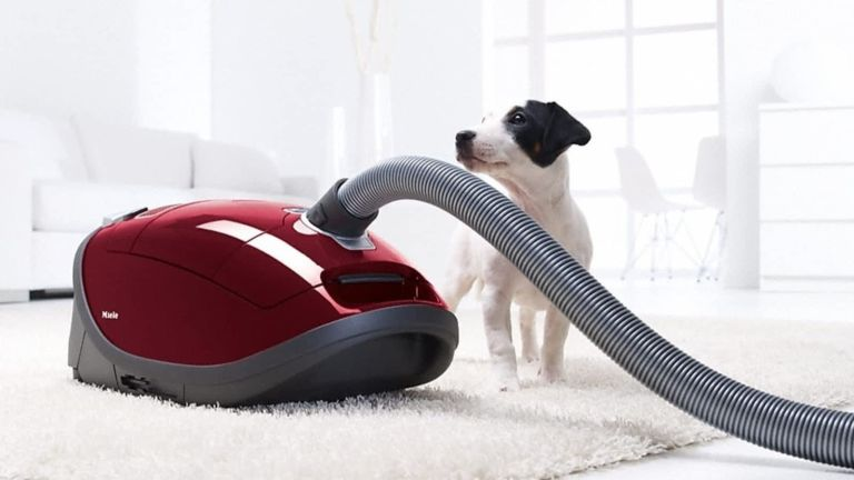 best vacuum for pet hair from Miele with a dog
