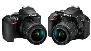 Nikon D3500 vs D5600 in 2020