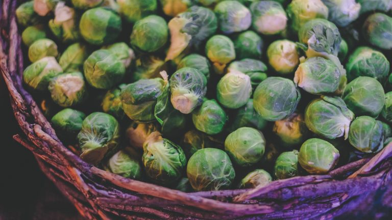 how to grow Brussels sprouts, by Cyrus Crossan