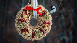 Birdseed Wreath Recipes